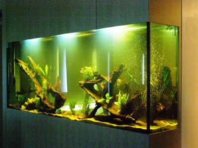 shri radha aqua garden price list